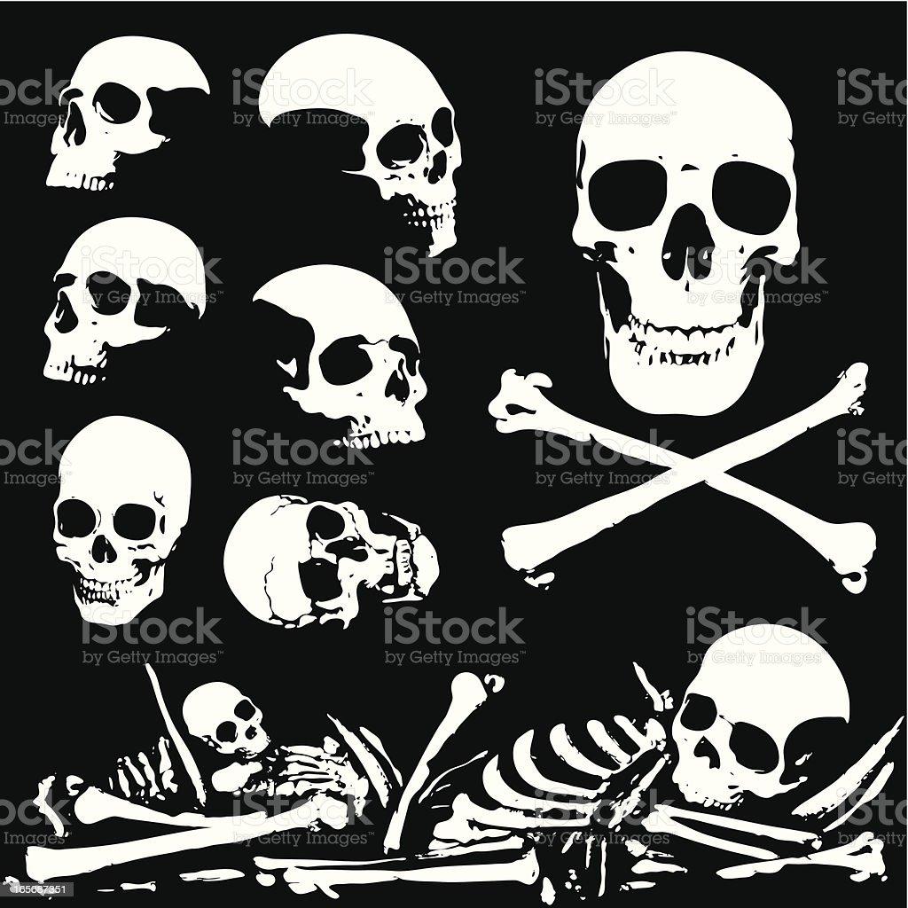 Skulls and bones royalty-free stock vector art