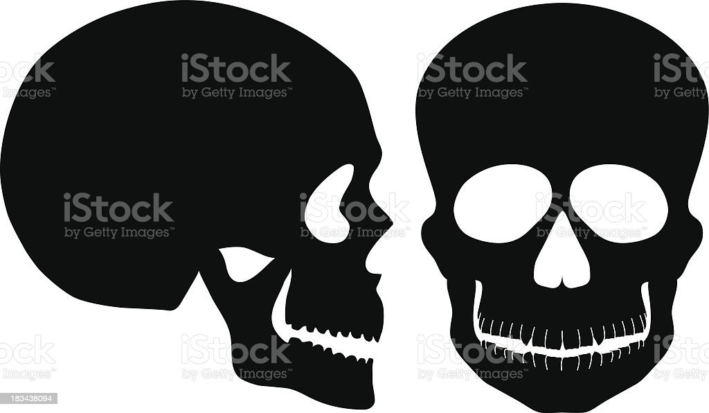 Skulls Black and White Front Side View Vector Illustration royalty-free stock vector art