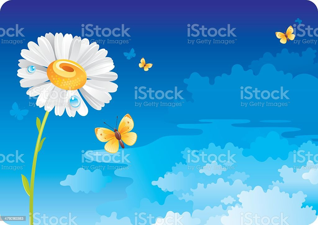 Sky background with camomile royalty-free stock vector art