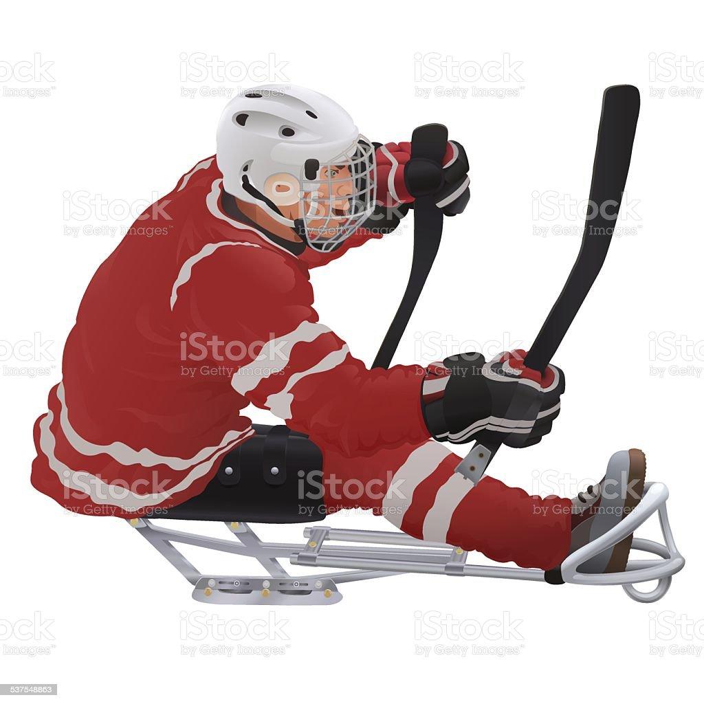 sledge hockey player vector art illustration