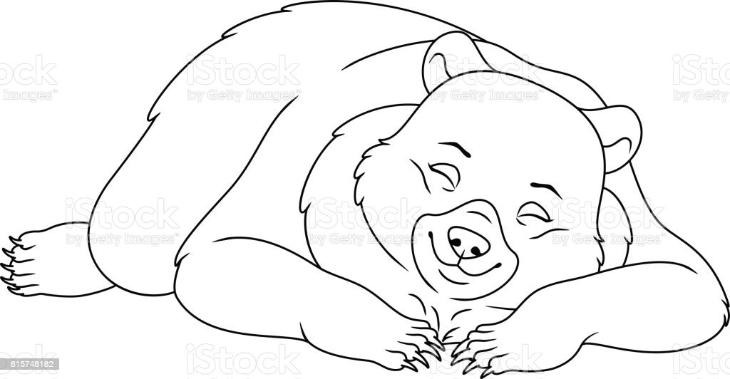 Sleeping Bear Coloring Page Royalty Free Stock Vector Art