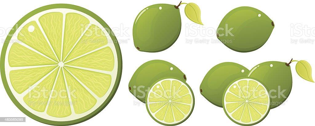 Slice of Lime vector art illustration