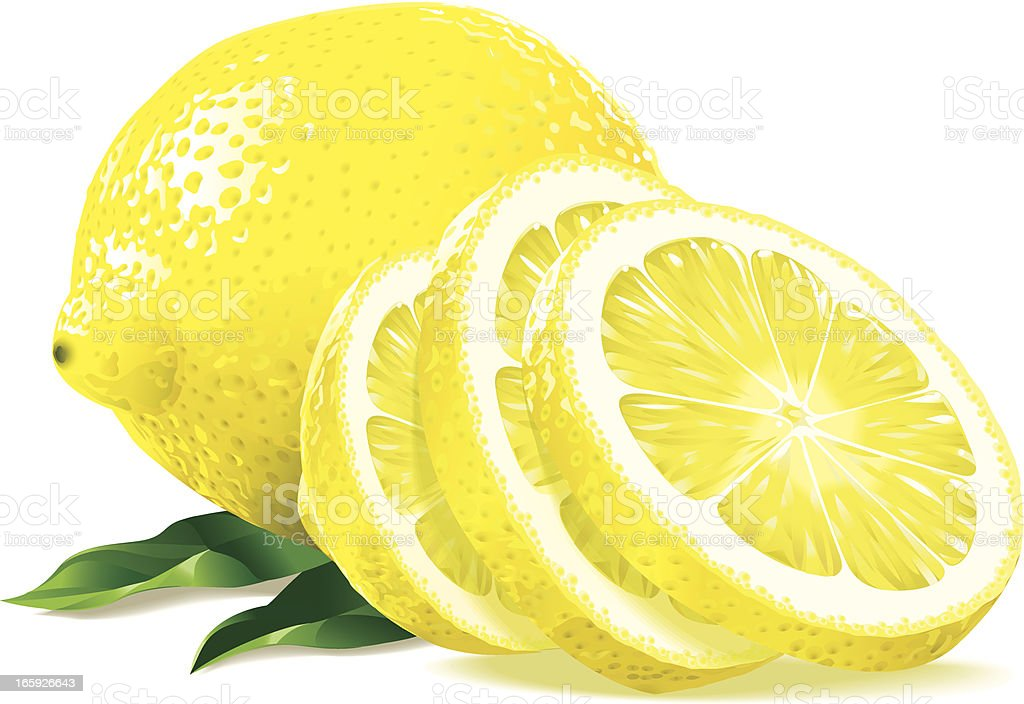 Sliced lemon vector art illustration