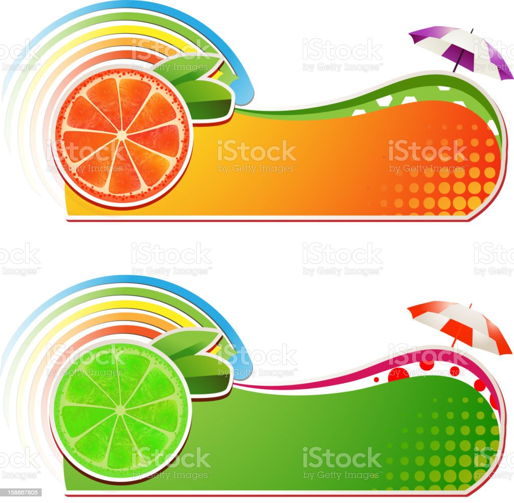 Slices grapefruit and lime royalty-free stock vector art