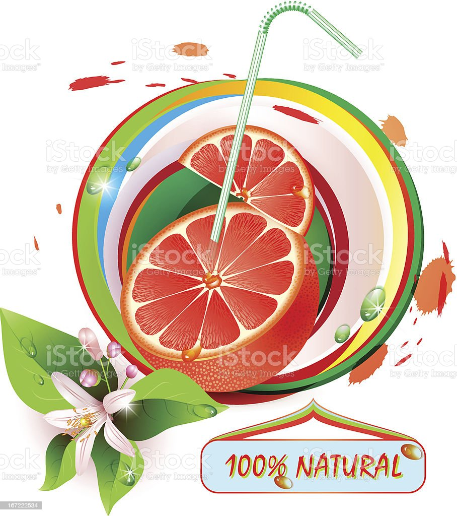 Slices grapefruit with flowers and straw royalty-free stock vector art
