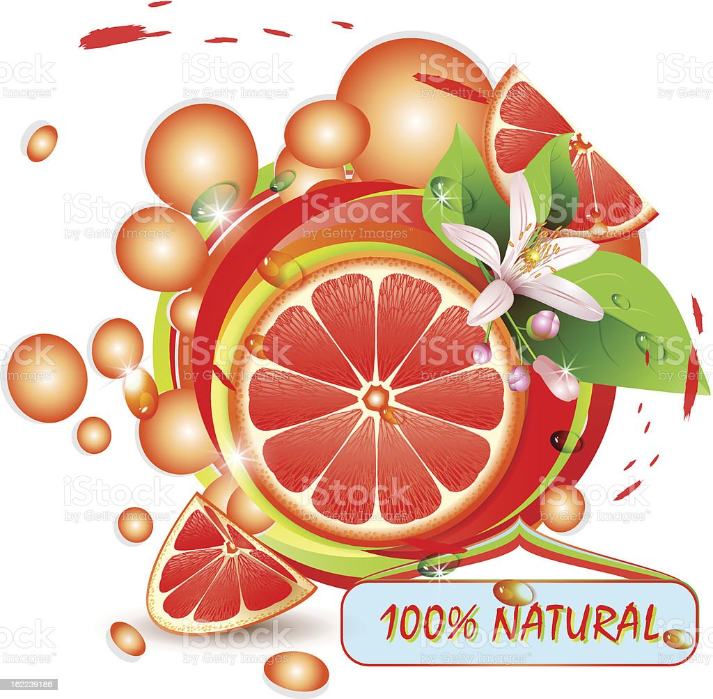 Slices grapefruit with flowers royalty-free stock vector art