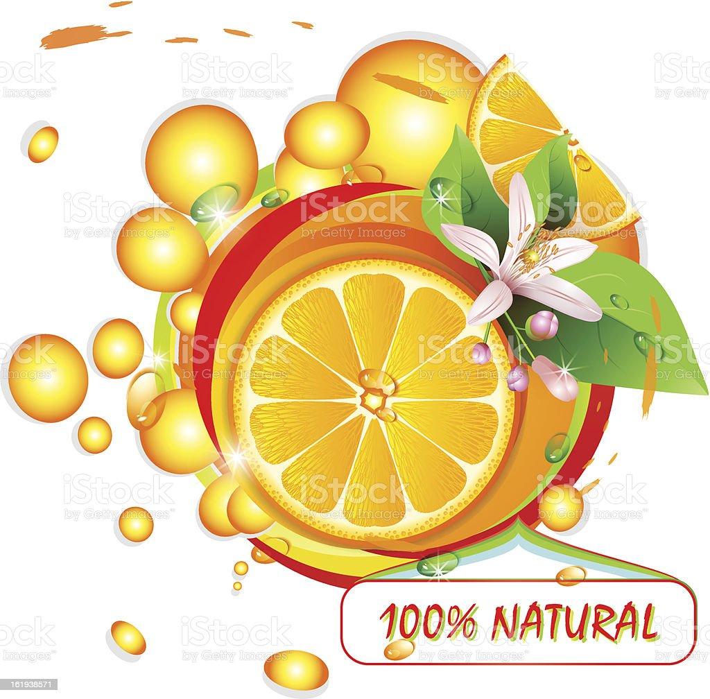 Slices orange with flowers royalty-free stock vector art