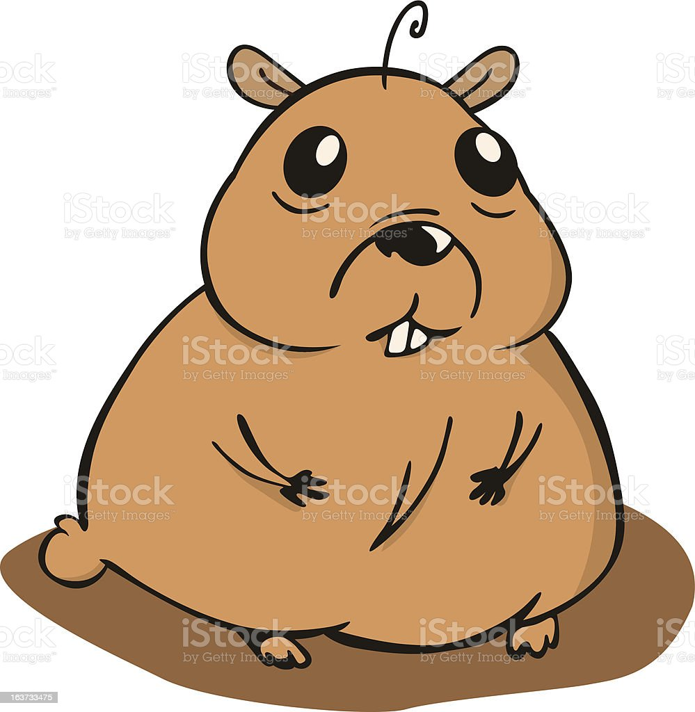 small and chubby hamster sitting on the floor royalty-free stock vector art