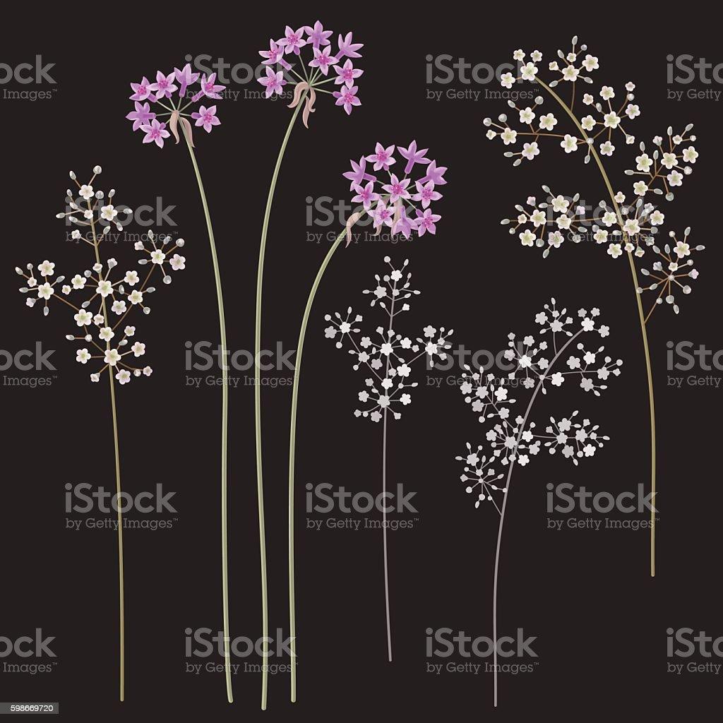 Small flowers on dark vector art illustration