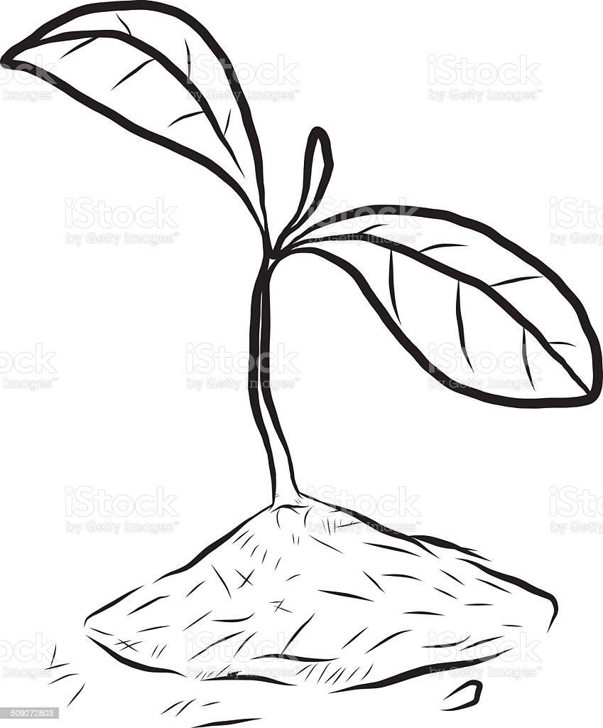 small plant royalty-free stock vector art