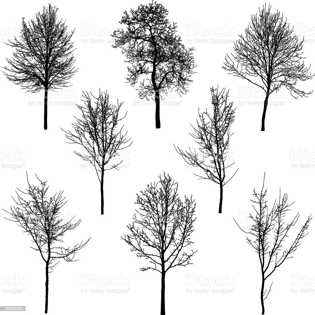 Small tree and sapling silhouettes vector art illustration