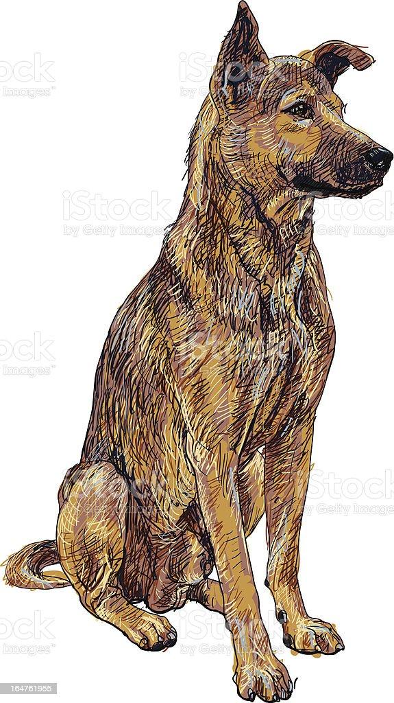 Smart thai dog royalty-free stock vector art