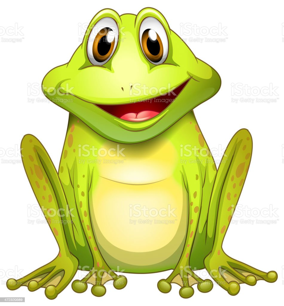 Smiling frog vector art illustration