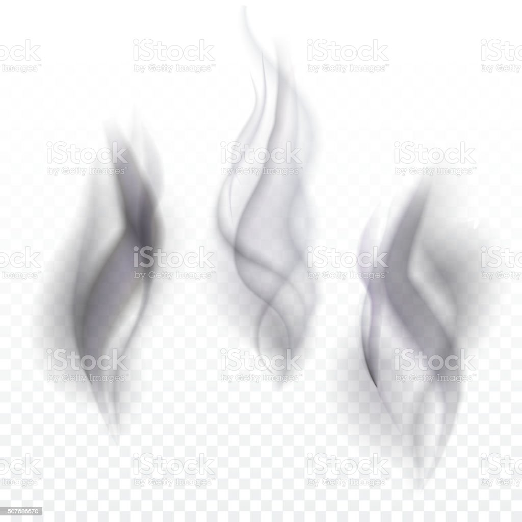 Smoke waves transparent vector art illustration