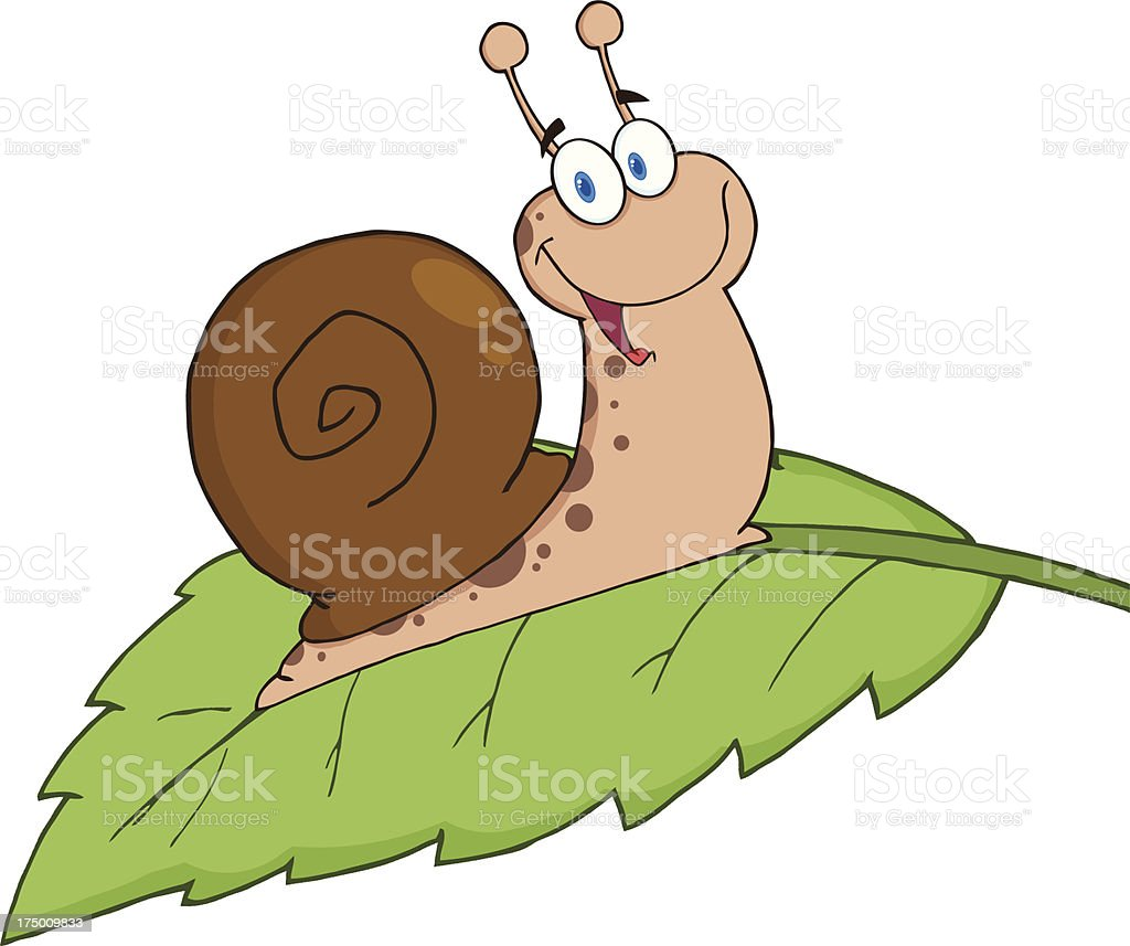 Snail On A  Leaf royalty-free stock vector art
