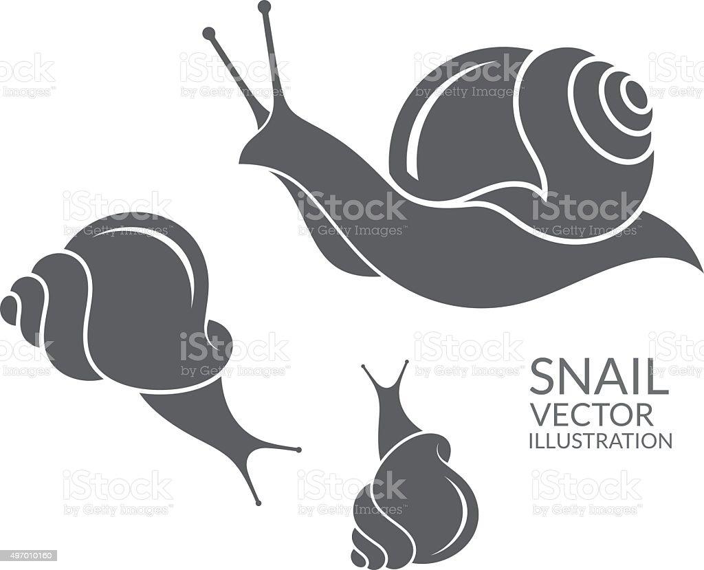 Snail vector art illustration