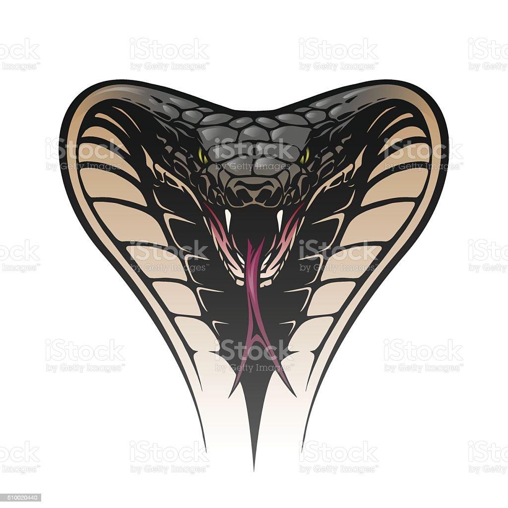 Snake head vector art illustration