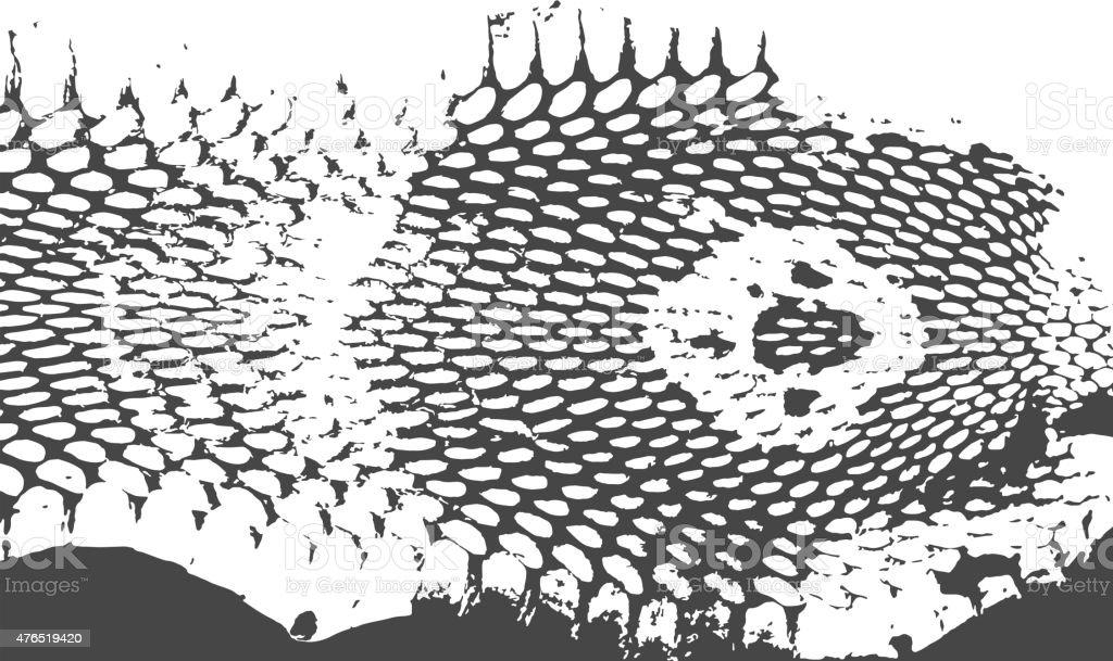 Snake skin abstract texture, cobra head. black on white background. vector art illustration