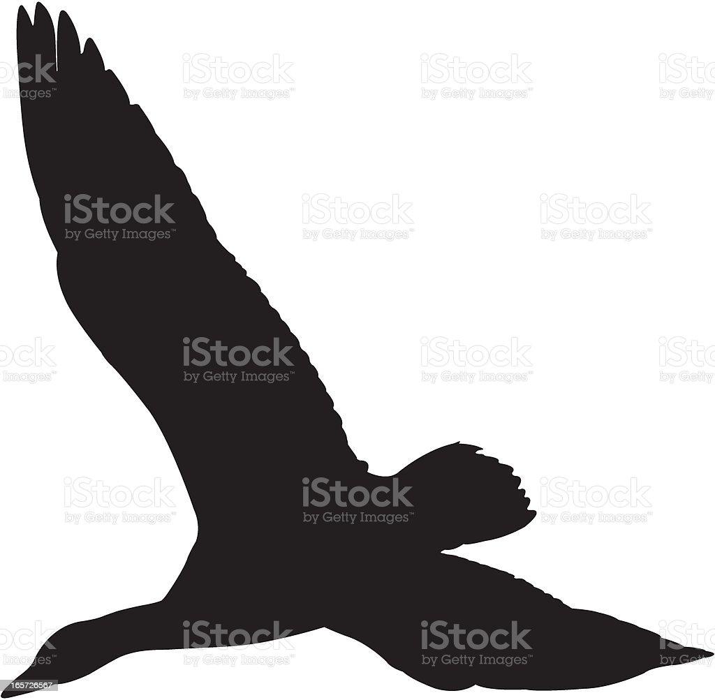 Snow Goose Flying Silhouette vector art illustration