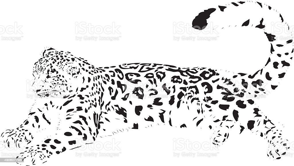 Snow leopard illustration vector art illustration