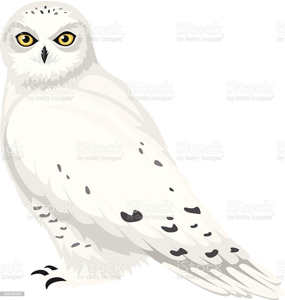 Hedwig Owl Clip Art – Cliparts