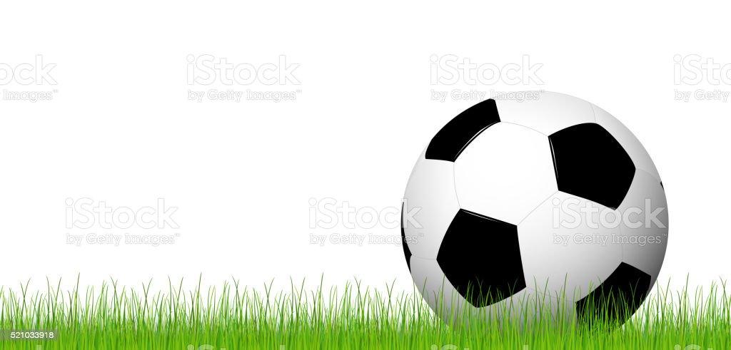 soccer ball lying in the grass vector art illustration