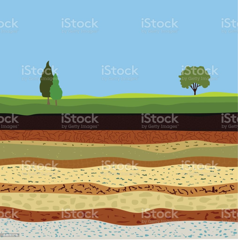 soil formation and soil horizons vector art illustration