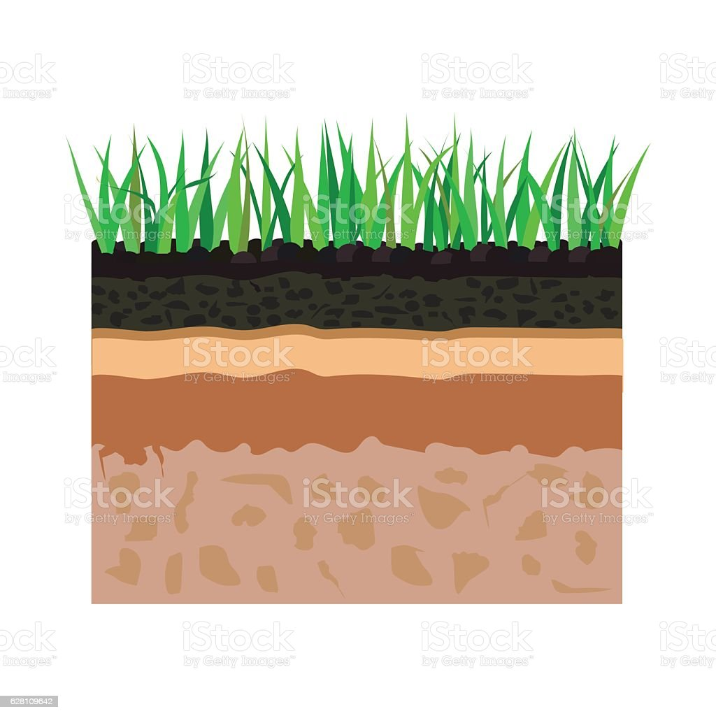 soil layers with grass vector art illustration