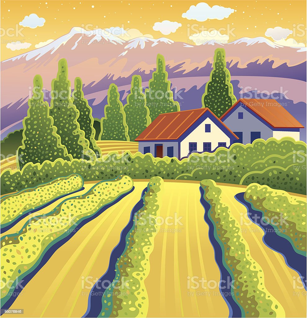 Solar Landscape with vineyard royalty-free stock vector art
