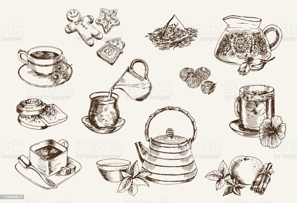 Some types of tea vector art illustration