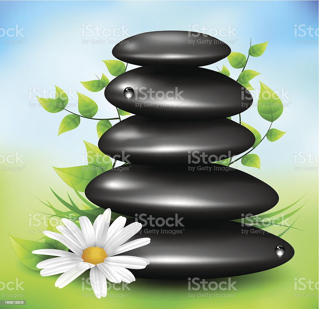 Spa stones with flower and leafs royalty-free stock vector art
