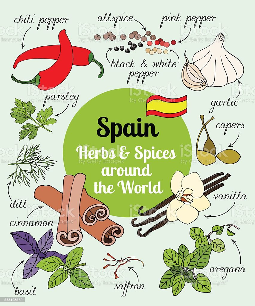 Spain herbs and spices. vector art illustration