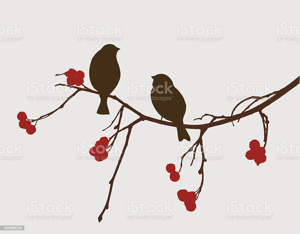 sparrows on a mountain ash branch vector art illustration
