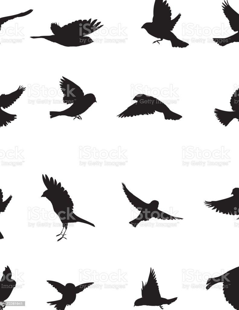 Sparrows Silhouette vector art illustration