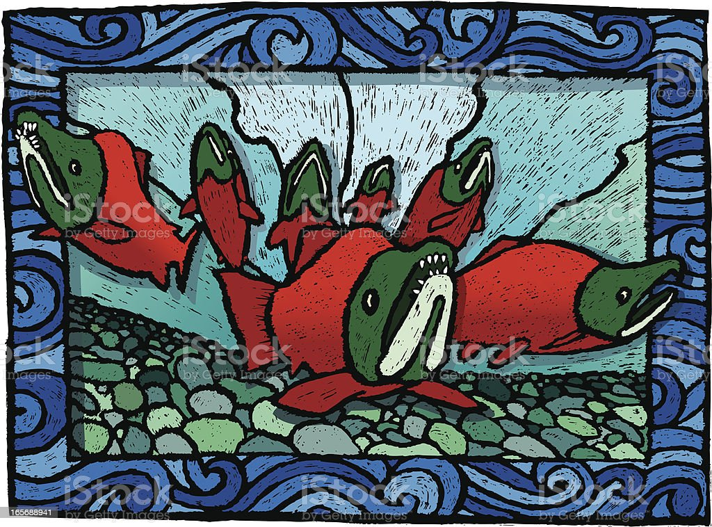 Spawning Salmon vector art illustration
