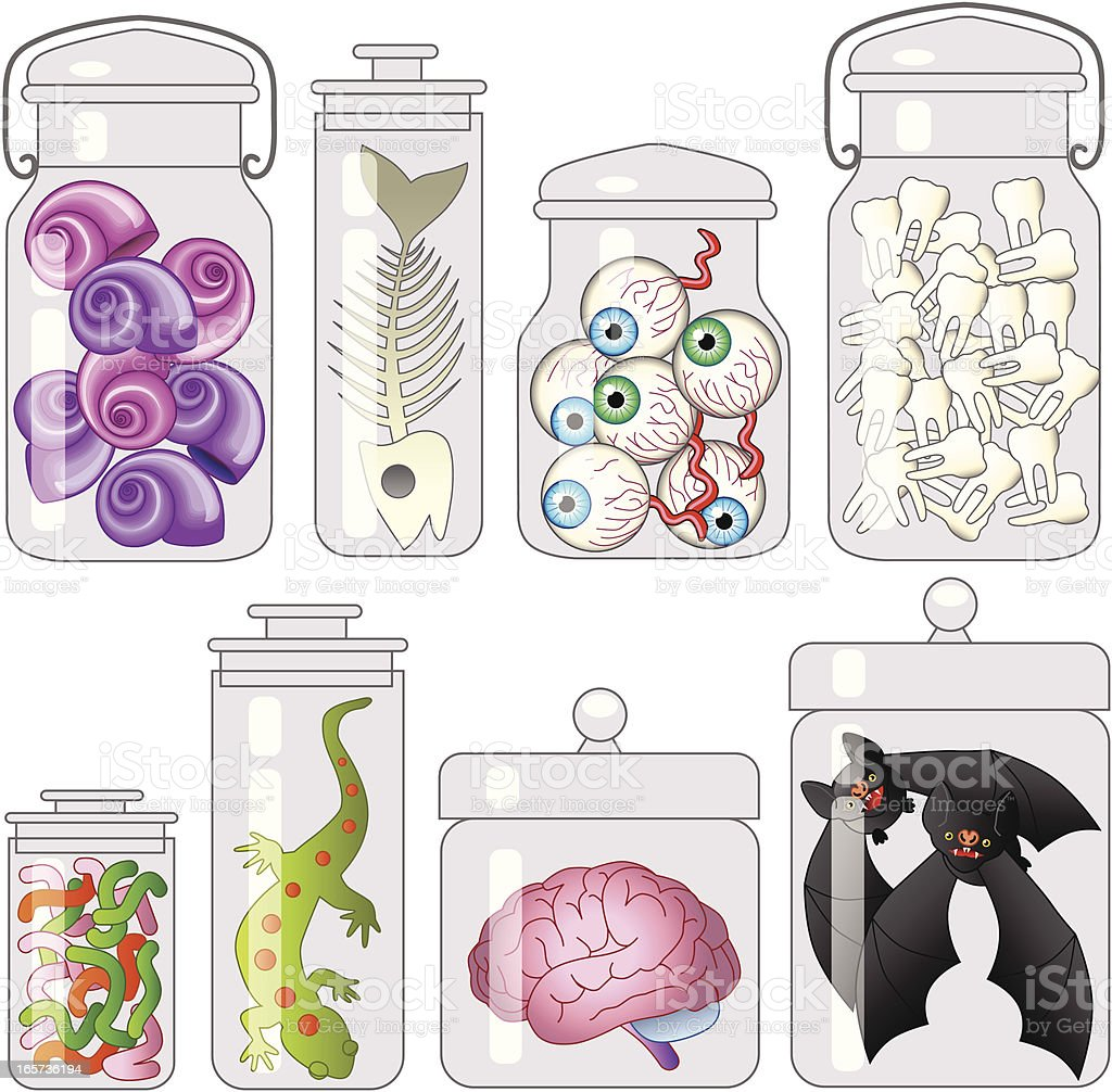 specimen jars royalty-free stock vector art