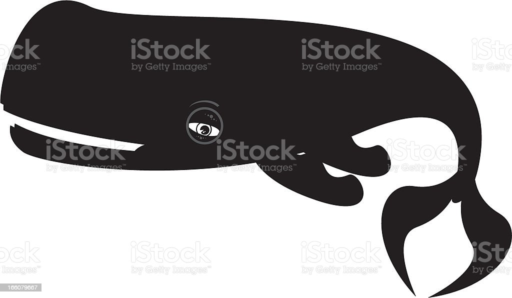 Sperm Whale royalty-free stock vector art