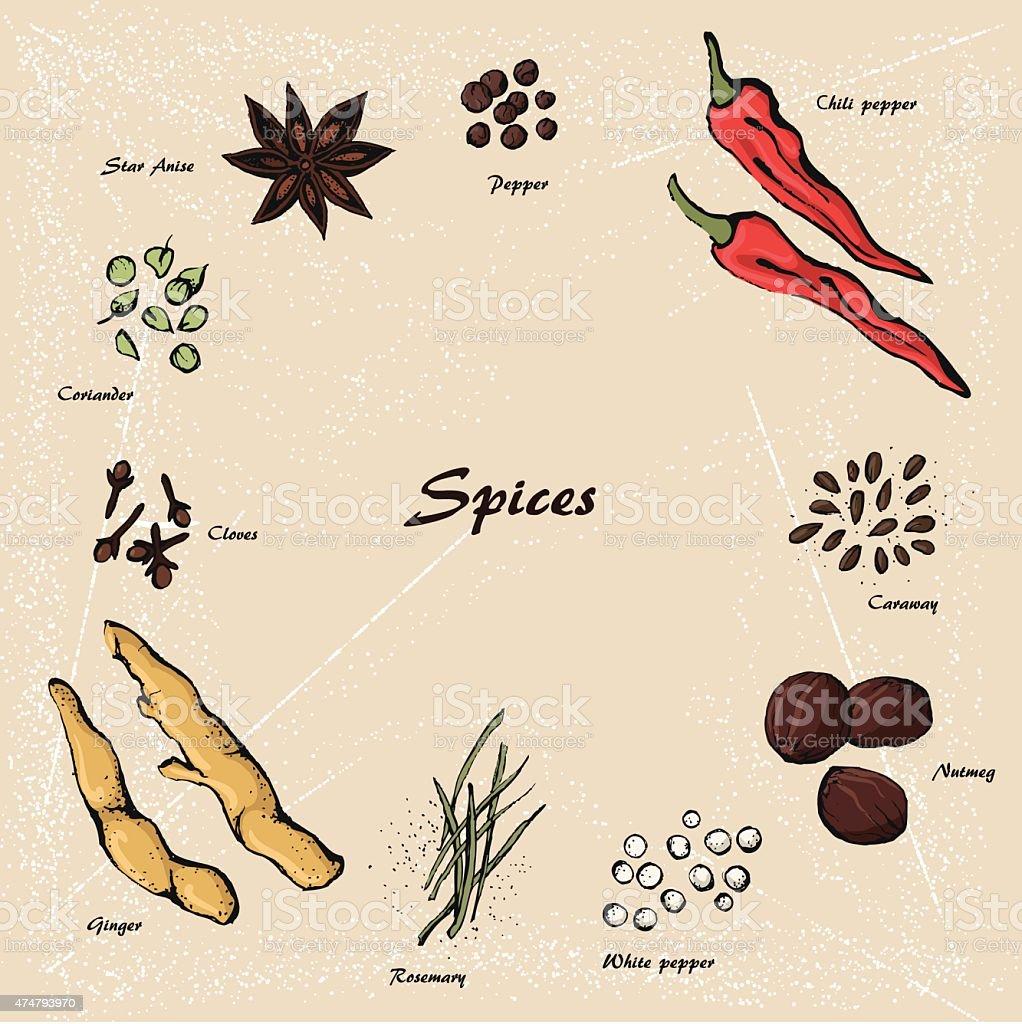 spices 3 vector art illustration