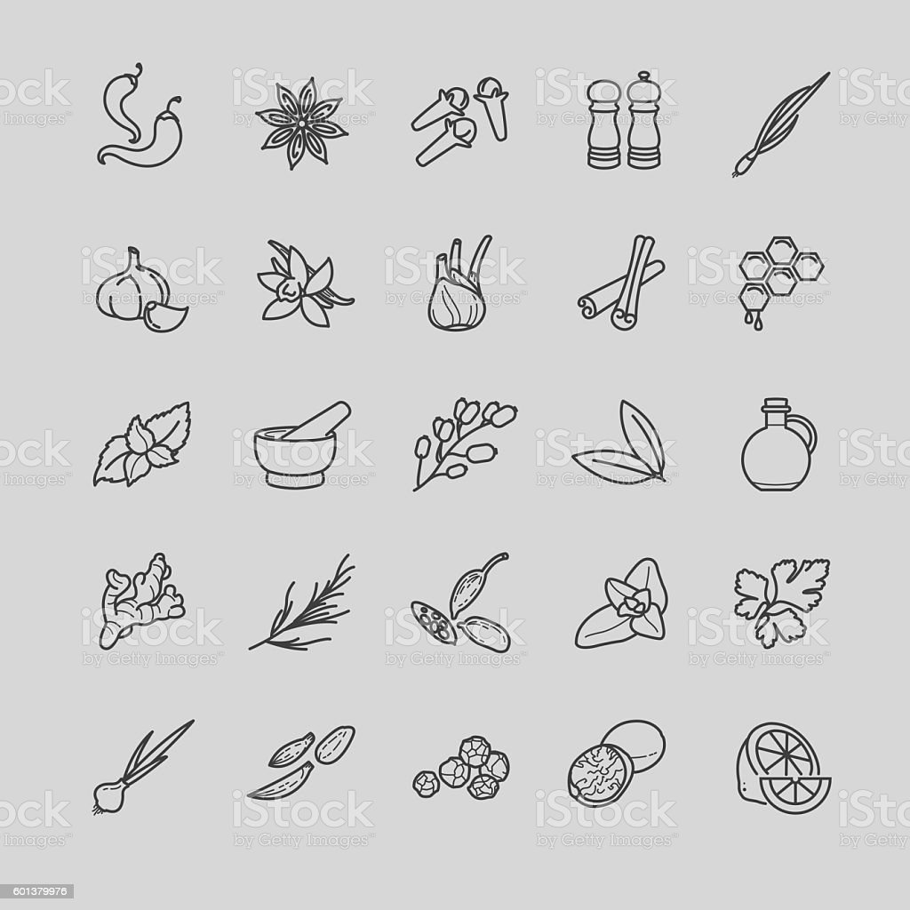 Spices and seasonings line icons vector art illustration