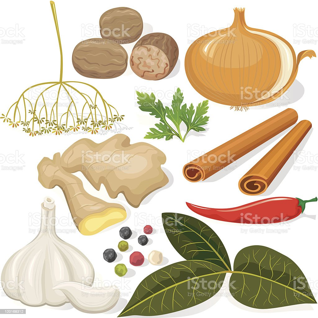 Spices and vegetables for cooking royalty-free stock vector art