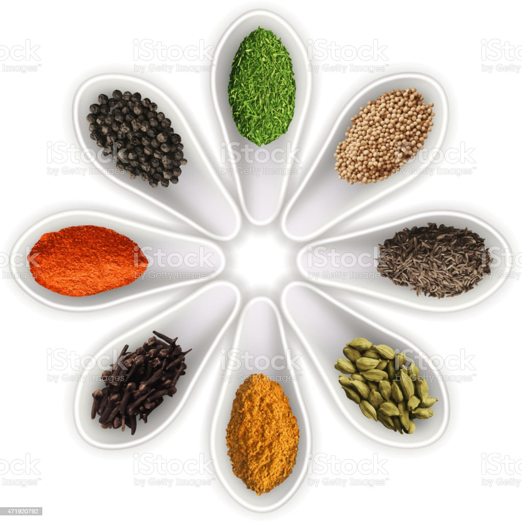 Spices in the spoons isolated on white vector vector art illustration