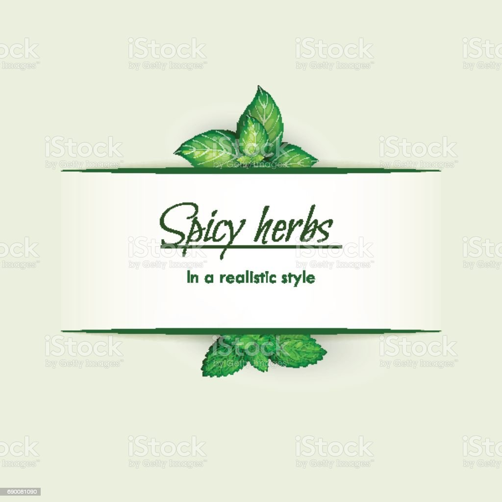 Spicy herbs in a realistic style, frame vector art illustration