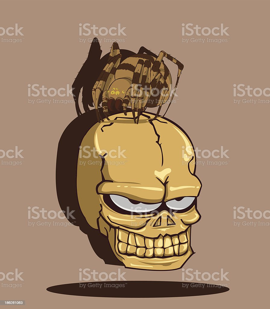 Spider on Skull royalty-free stock vector art