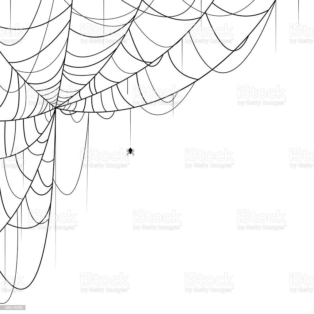 Spider Web vector art illustration