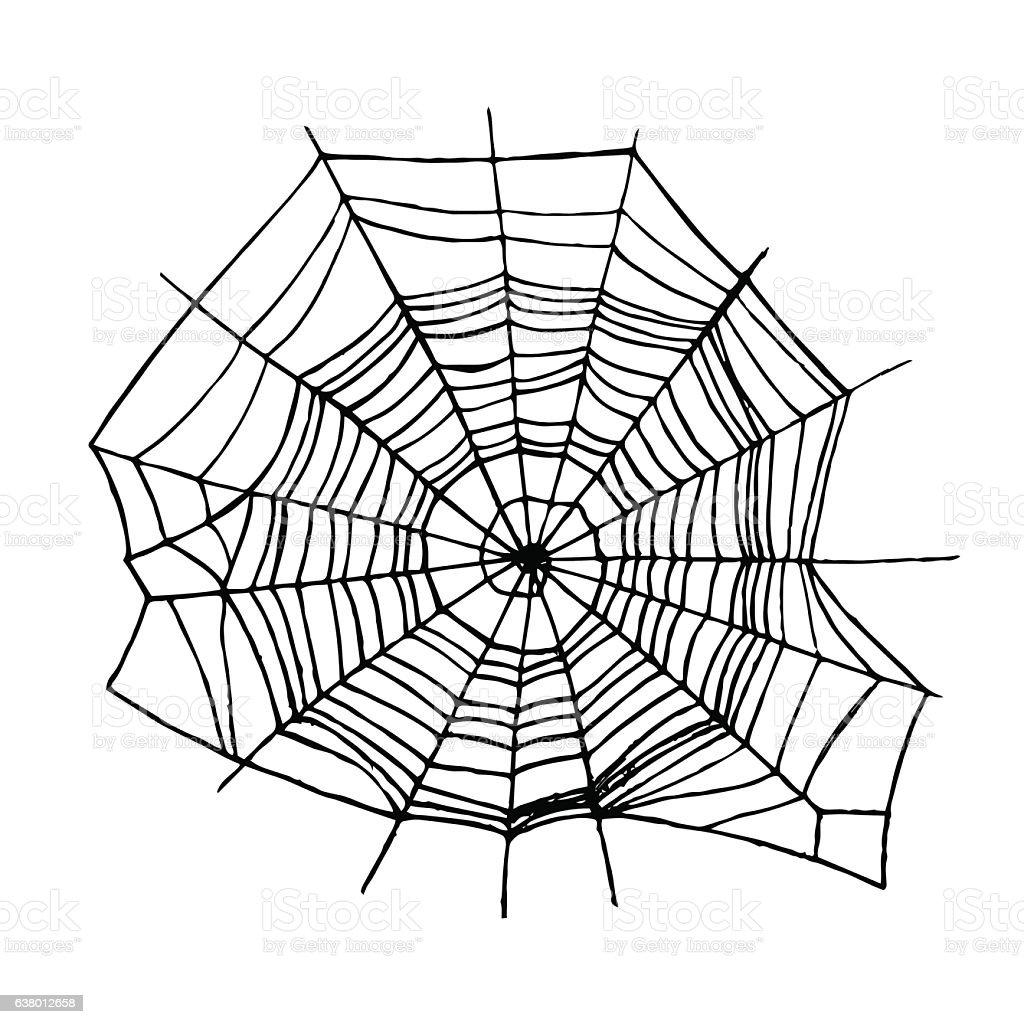 Spider Web. Vector vector art illustration