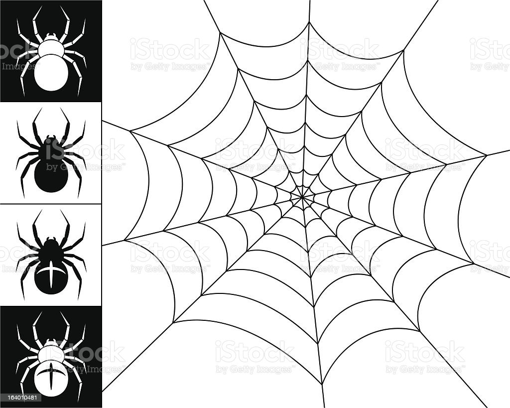 Spiders and web vector art illustration