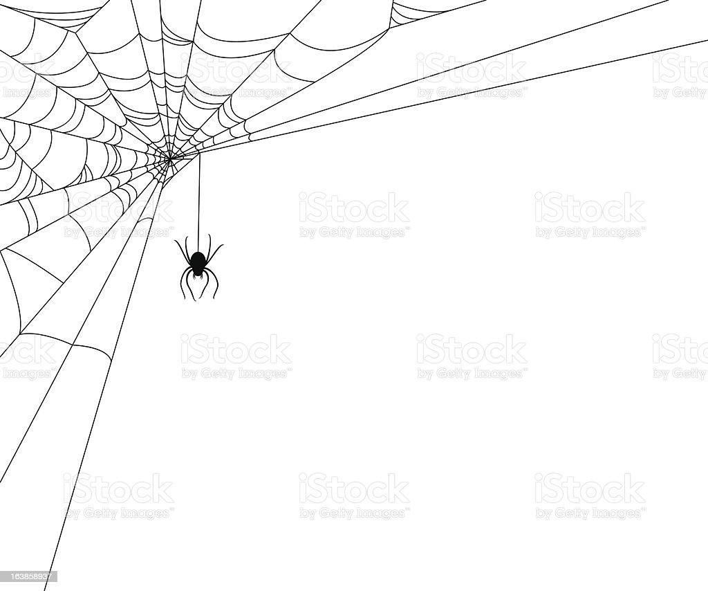 Spiderweb with Spider vector art illustration
