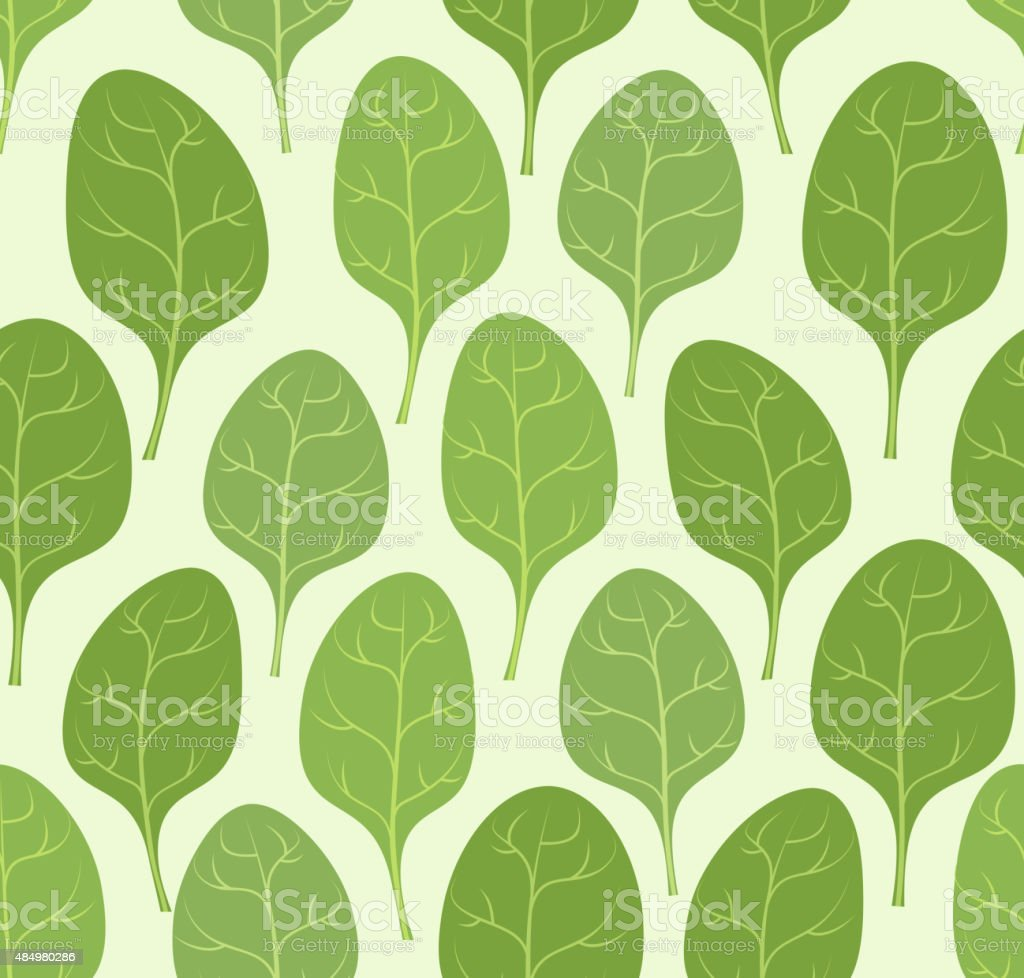 Spinach leaves seamless pattern. Vector background Veggie plants vector art illustration