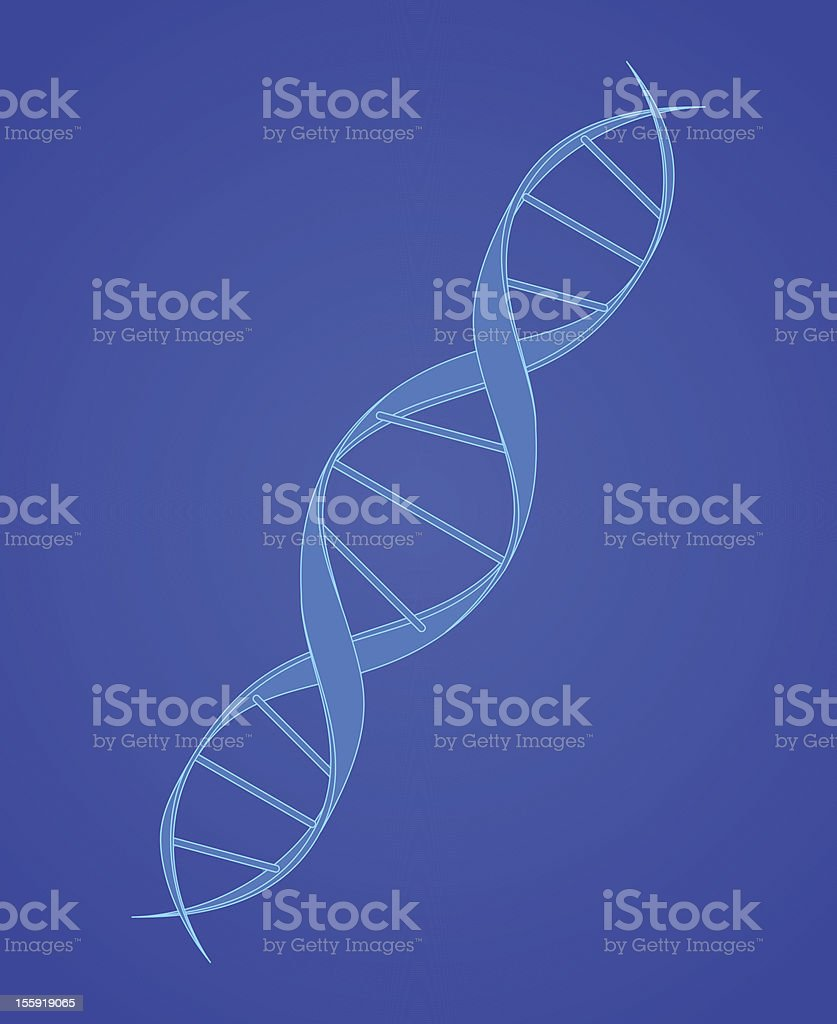 DNA Spiral on Blue vector art illustration