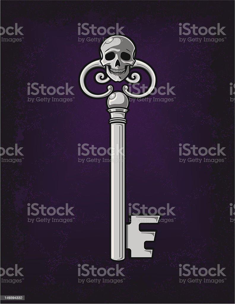 Spooky Silver Skeleton Key vector art illustration